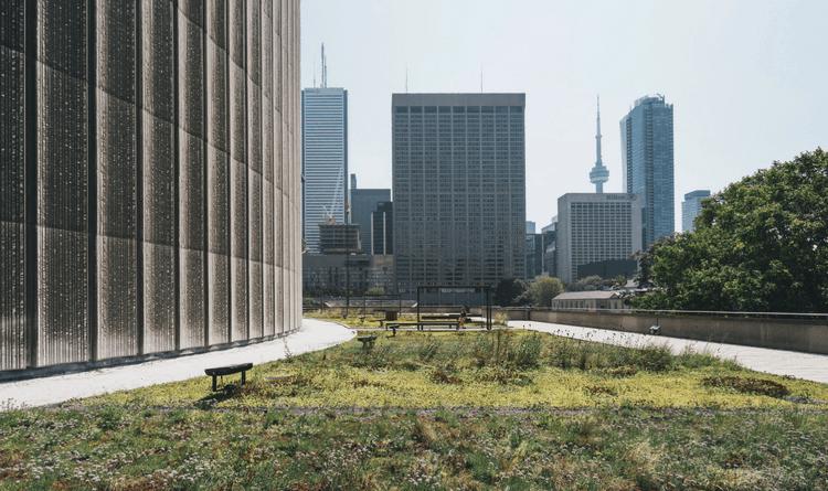 Doğa ile İç İçe Ofis Tasarımları